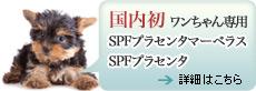 国内初ワンちゃん専用 SPFプラセンタマーベラス、SPFプラセンタ
