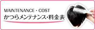 かつらメンテナンス・料金表